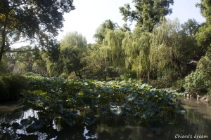 Suzhou_6